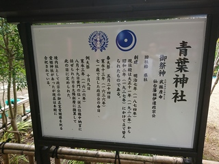 DSC_3329.JPG